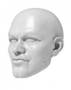 3D Model of Matt Damon head for 3D print