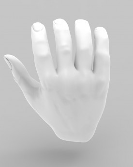 3D Model of open palm hands for 3D print